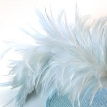 Pale Blue Stripped Hackle Feather Mount